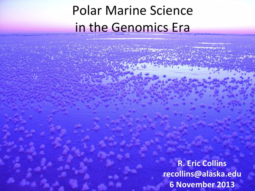 IMS-seminar-cover
